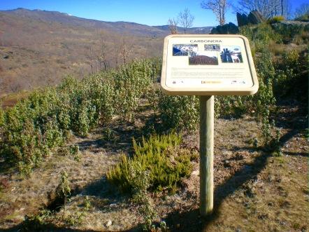 Sierra del Rincón 4